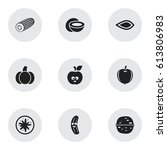 set of 9 editable food icons.... | Shutterstock .eps vector #613806983