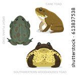 Toad Cane Set Cartoon Vector...