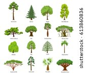 flat green trees vector... | Shutterstock .eps vector #613860836