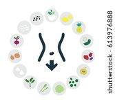 vector illustration of healthy... | Shutterstock .eps vector #613976888