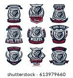 set emblems  logos  stickers ... | Shutterstock .eps vector #613979660