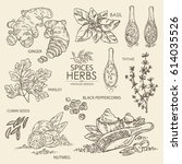 collection of herbs and spice.... | Shutterstock .eps vector #614035526