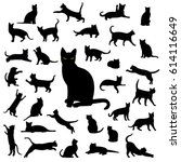 Stock photo black cat collection 614116649