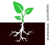 sprout with root vector icon... | Shutterstock .eps vector #614149094
