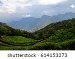 landscape of tea plantation and ... | Shutterstock . vector #614153273