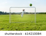 Dog As Amusing Goalkeeper Save...