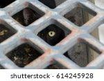 panic cat looking through the... | Shutterstock . vector #614245928