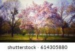 pink blossom tree background | Shutterstock . vector #614305880