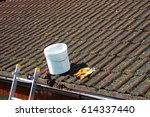 Dirty Roof Tiles With Dense...