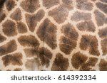 Leather Giraffe Textured Skin...