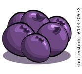 blueberries vector isolated on...   Shutterstock .eps vector #614470973