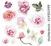 watercolor set with peony ... | Shutterstock . vector #614501999