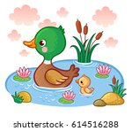 A Duck With Ducklings Floats O...