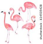 Set Watercolor Random Flamingo...