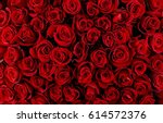 Stock photo natural red roses background 614572376