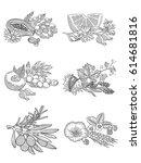 image of herbs and berries  in...   Shutterstock .eps vector #614681816