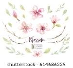 watercolor boho blossom flower... | Shutterstock . vector #614686229