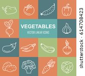 linear icons of vegetables.... | Shutterstock .eps vector #614708423