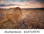 field with bales of hay | Shutterstock . vector #614714570