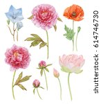 Watercolor Flower Collection O...