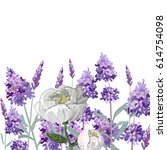 Hand Drawn Vector Lavender And...
