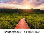walkway with wooden bridge... | Shutterstock . vector #614803460