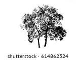 silhouette of black tree on... | Shutterstock . vector #614862524