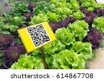 smart agriculture  farm.... | Shutterstock . vector #614867708