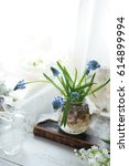 Flower Arrangement Muscari