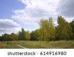 summer pathway in green sunny... | Shutterstock . vector #614916980