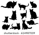 illustration  vector ... | Shutterstock .eps vector #614987039