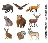 cartoon forest animals set with ... | Shutterstock .eps vector #615086186