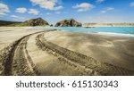 Tyre Or Tire Tracks On Whatipu...