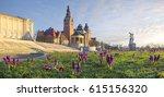 Crocuses blooming on Haken Terrace in Szczecin, Poland