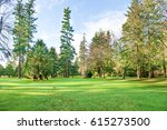 green sunny park with big trees ... | Shutterstock . vector #615273500