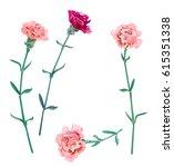 Set Of Carnation Schabaud  Pin...