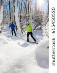 a couple cross country skis in...   Shutterstock . vector #615450530