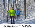 a couple cross country skis in... | Shutterstock . vector #615453824