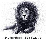 Lion Black White