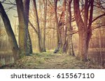 spring forest landscape. path... | Shutterstock . vector #615567110