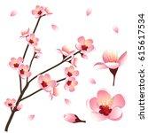 Prunus Persica   Peach Flower...