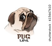 Portrait Of A Pug Puppy In...