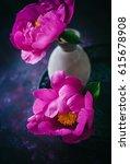 peony still life   Shutterstock . vector #615678908