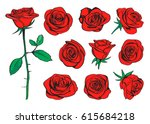 Stock vector red roses hand drawn color set black line rose flowers inflorescence silhouettes isolated on white 615684218