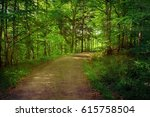 fresh and green forest in... | Shutterstock . vector #615758504