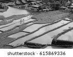 blur  in  philippines  terrace... | Shutterstock . vector #615869336