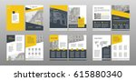 design annual report vector... | Shutterstock .eps vector #615880340