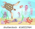 "set of ""marine life"" for your... 