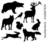 Forest Animals Vector...