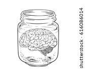 human brain in glass jar... | Shutterstock .eps vector #616086014